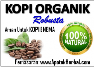kopi robusta organik untuk kopi enema coffee indonesia gerson therapy